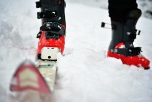 Esqui